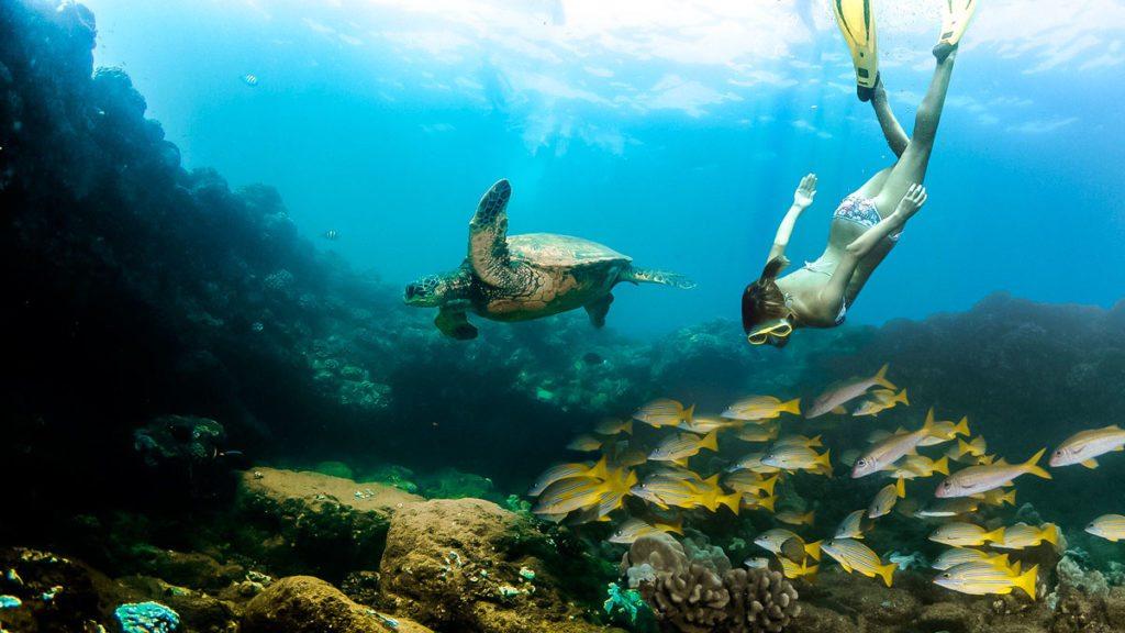 deluxe-napali-snorkel-scuba