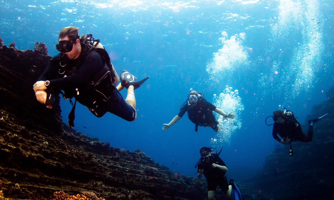 水肺潜水_Scuba Diving Kauai - Blue Dolphin Charters